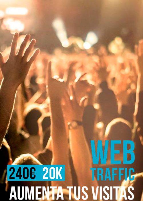 Tráfico Web 20 mil visitas SEO